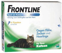 Flohmittel für Katzen