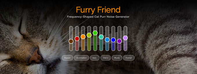 Katzenschnurren Therapie
