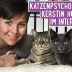 Mobile Katzenpflege Berlin