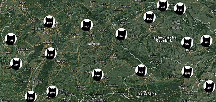 Katzenkarte